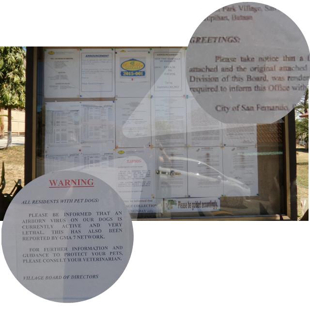 bulletin board - screenshot using my mobile phone camera