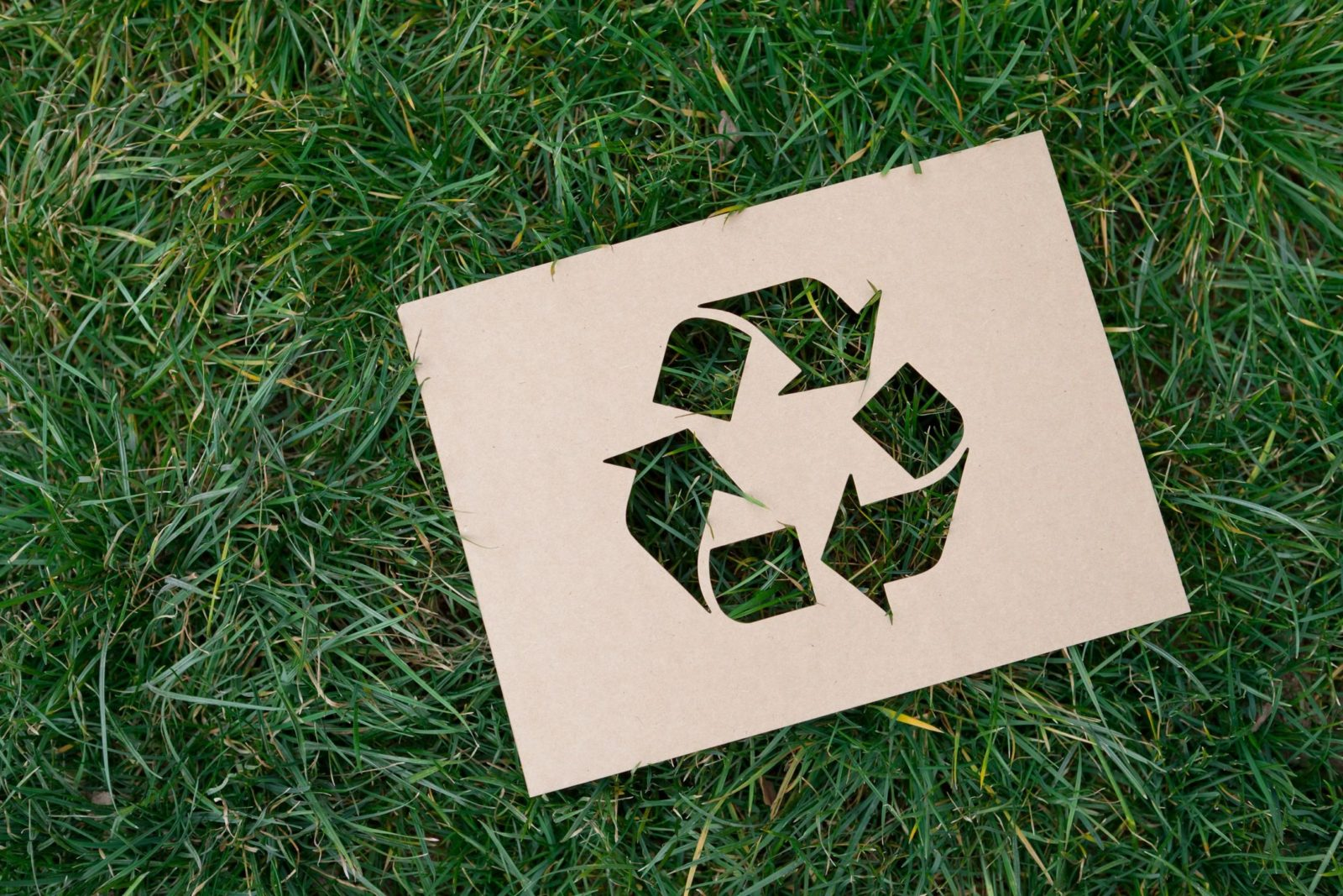 recycle symbol in the grass